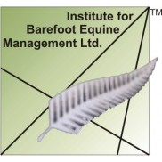 IBEM Ltd.